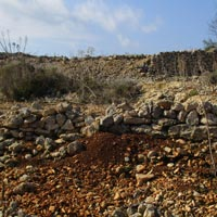 Collapsed Dry Stone Wall & Soil Erosion