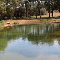 Current Pond